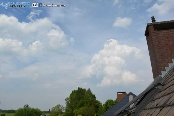 wolk cumulus congestus