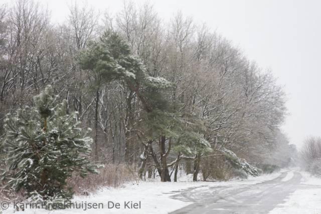 sneeuwval karin broekhuijsen