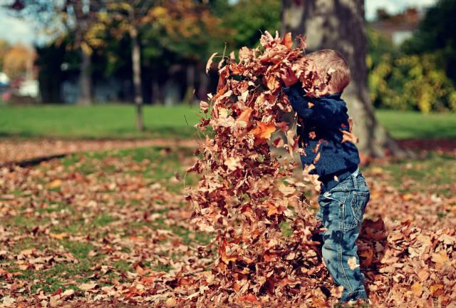 kinderen-spelen-met-bladeren