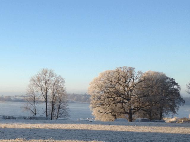 sneeuwfoto uit Henegouwen
