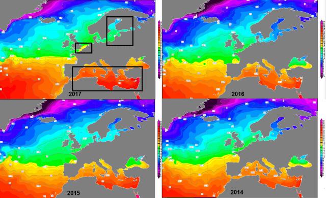 temperatura del agua de mar en los últimos años