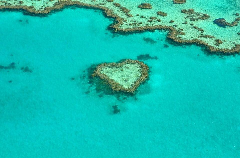 Invloed van zuurstofverarming op het Great Barrier Reef in Australië